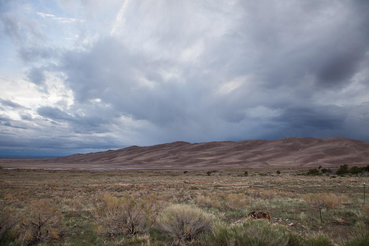 Gloomy Dunes